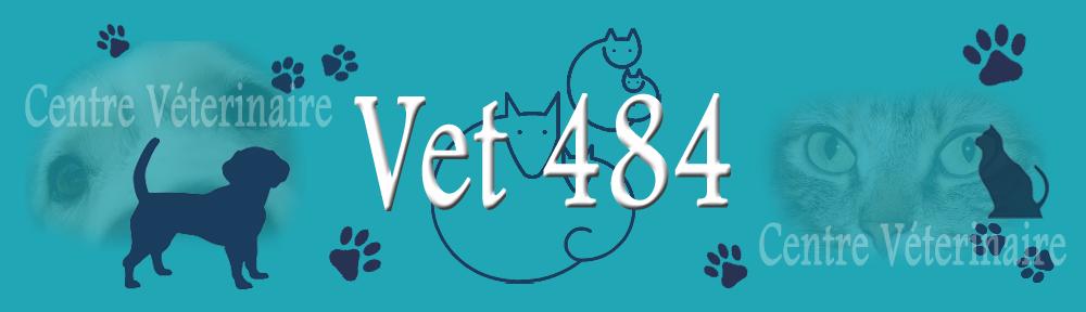 VET 484